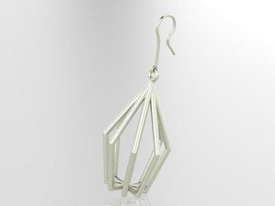 3D oorringen in zilver